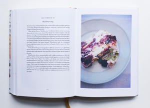 Nigel Slater The Kitchen Diaries Volume Ii
